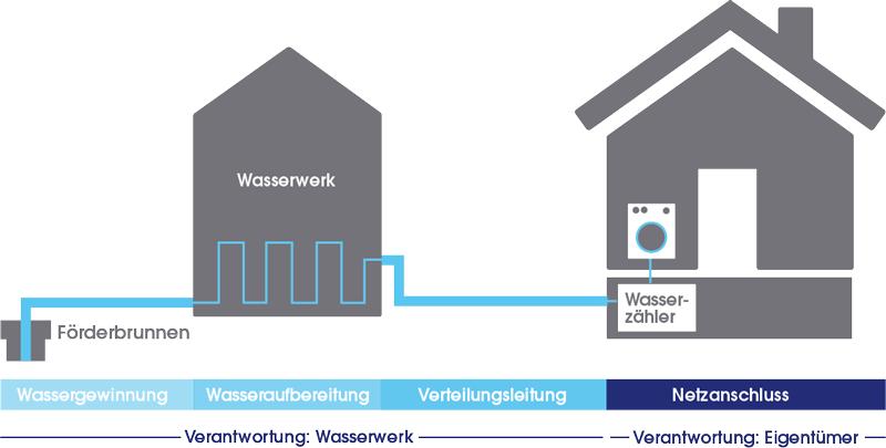 Infografik, die die Wasserversorgung vom Wasserwerk bis zum Hausanschluss darstellt